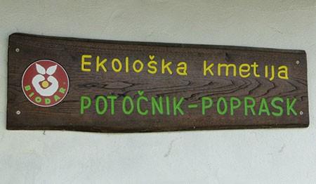 EKOLOŠKA KMETIJA POTOČNIK POPRASK, ŠMARTNO OB PAKI