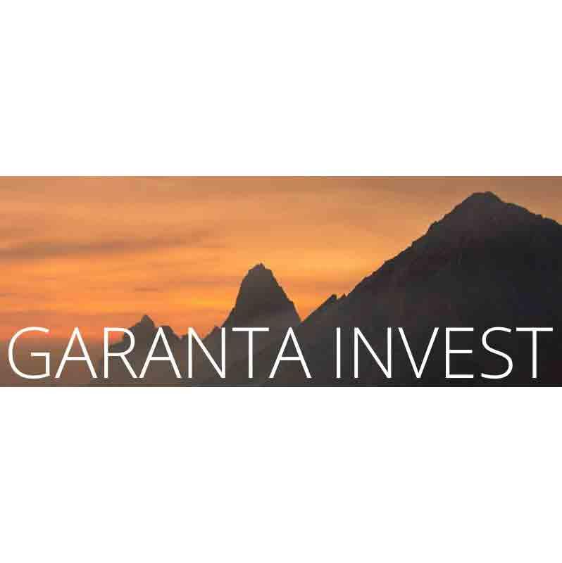 GARANTA INVEST, KAMNIK 1